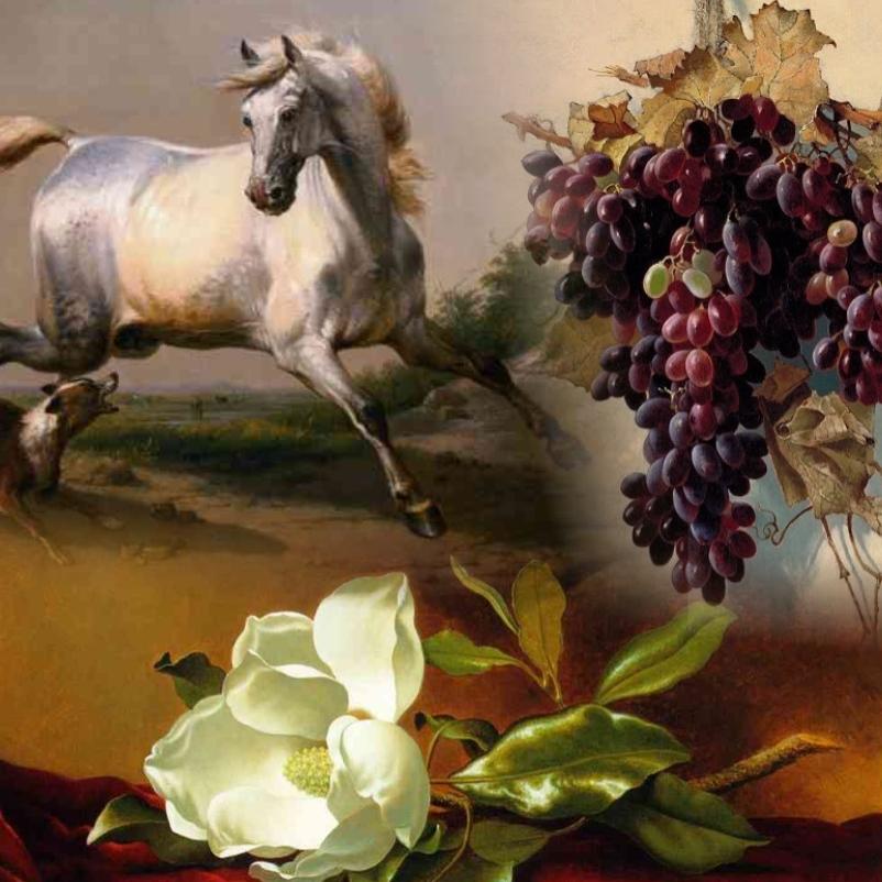 Flowers, animals and still life